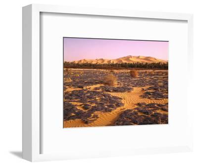 Nordafrika, Sahara, Saoura-Tal, Kalkstein, Vegetation, Sanddv¼nen, Wv¼ste-Thonig-Framed Photographic Print