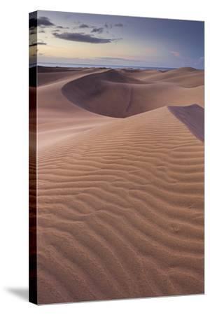 Dunes Close Maspalomas, Gran Canaria, Canary Islands, Spain-Rainer Mirau-Stretched Canvas Print