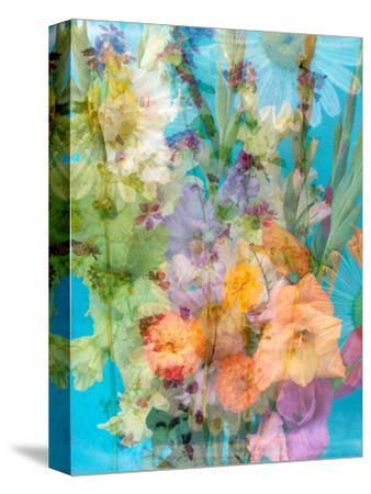 Colorful Photomontage of Flowers, Bouquet-Alaya Gadeh-Stretched Canvas Print