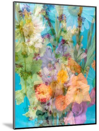 Colorful Photomontage of Flowers, Bouquet-Alaya Gadeh-Mounted Photographic Print