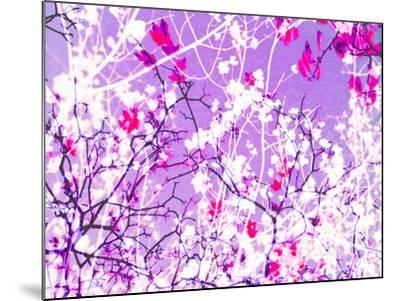 Photomontage of Trees in Purple Tones-Alaya Gadeh-Mounted Photographic Print