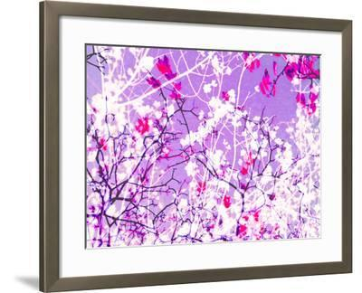 Photomontage of Trees in Purple Tones-Alaya Gadeh-Framed Photographic Print