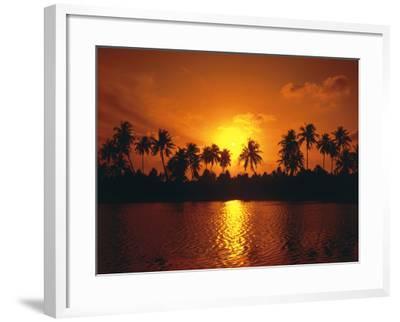 Palm Island, Silhouette, Sundown-Thonig-Framed Photographic Print