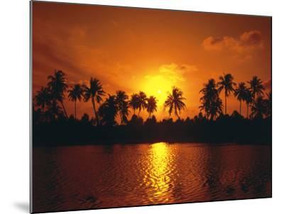 Palm Island, Silhouette, Sundown-Thonig-Mounted Photographic Print