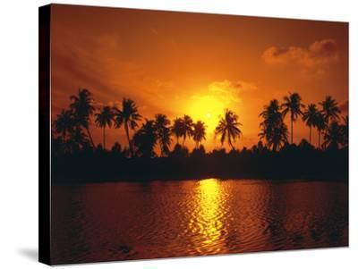 Palm Island, Silhouette, Sundown-Thonig-Stretched Canvas Print