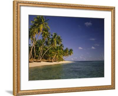 Palmenstrand-Thonig-Framed Photographic Print
