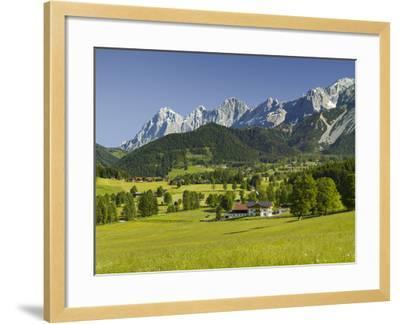 Ramsau, Dachstein, Summer Meadow, Styria, Austria-Rainer Mirau-Framed Photographic Print