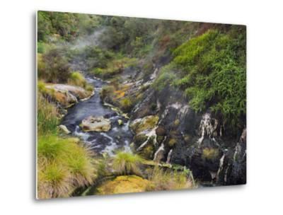 Hot Springs, Waimangu Volcanic Valley, Rotorua, Bay of Plenty, North Island, New Zealand-Rainer Mirau-Metal Print