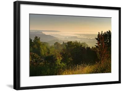 Morning Fog in the Saale Valley, Near Naumburg, Burgenlandkreis, Saxony-Anhalt, Germany-Andreas Vitting-Framed Photographic Print
