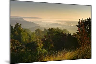 Morning Fog in the Saale Valley, Near Naumburg, Burgenlandkreis, Saxony-Anhalt, Germany-Andreas Vitting-Mounted Photographic Print