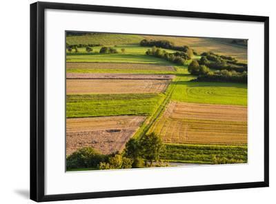 Germany, Baden-Wurttemberg, Swabian Alp, Mittlere Kuppenalb, Burladingen-Udo Siebig-Framed Photographic Print