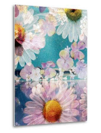 Composing of Blossoms and Water-Alaya Gadeh-Metal Print