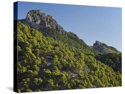 Mountain Coll De Les Fontanelles, Cap De Formentor, Majorca, Spain-Rainer Mirau-Stretched Canvas Print