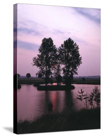 Lake, Island, Trees, Evening Mood-Thonig-Stretched Canvas Print