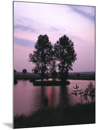 Lake, Island, Trees, Evening Mood-Thonig-Mounted Photographic Print