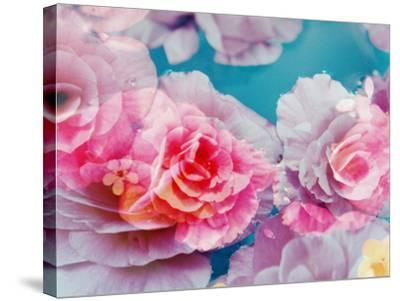 Photographic Layer Work from Blossoms in Water-Alaya Gadeh-Stretched Canvas Print