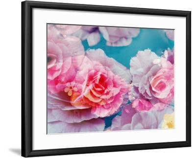 Photographic Layer Work from Blossoms in Water-Alaya Gadeh-Framed Photographic Print