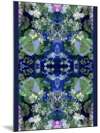 Symmetric Ornament from Flowers-Alaya Gadeh-Mounted Photographic Print