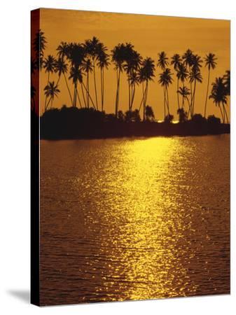 Palm Island, Sundown-Thonig-Stretched Canvas Print