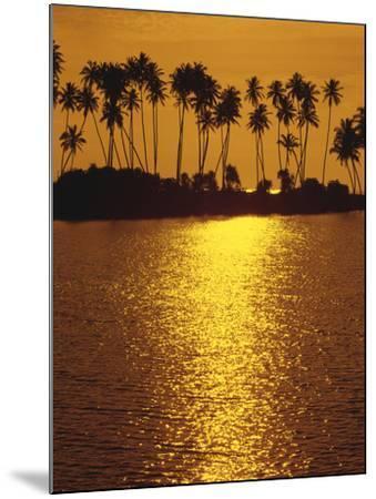 Palm Island, Sundown-Thonig-Mounted Photographic Print