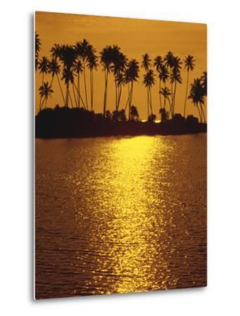 Palm Island, Sundown-Thonig-Metal Print