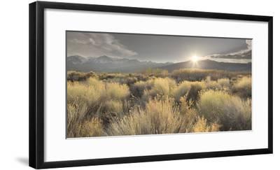 Owens River Valley, Sierra Nevada, California, Usa-Rainer Mirau-Framed Photographic Print