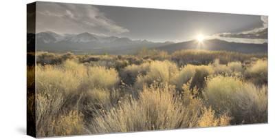 Owens River Valley, Sierra Nevada, California, Usa-Rainer Mirau-Stretched Canvas Print