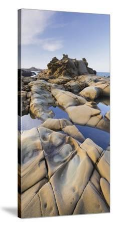 Sandstone, Salt Point State Park, Sonoma Coast, California, Usa-Rainer Mirau-Stretched Canvas Print