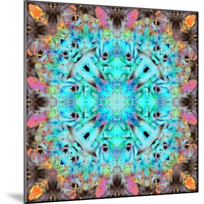 A Mandala Ornament from Flowers, Photograph, Many Layer Artwork-Alaya Gadeh-Mounted Photographic Print