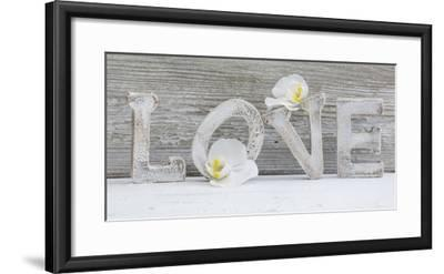 Wooden Letters 'Love' with Orchid Blossoms-Uwe Merkel-Framed Photographic Print