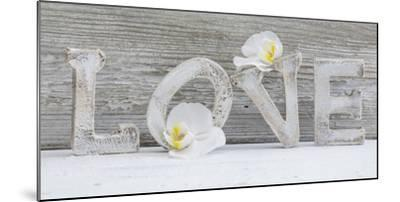 Wooden Letters 'Love' with Orchid Blossoms-Uwe Merkel-Mounted Photographic Print