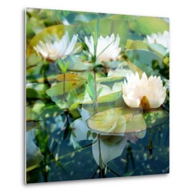 Montage of White Water Lilies-Alaya Gadeh-Metal Print