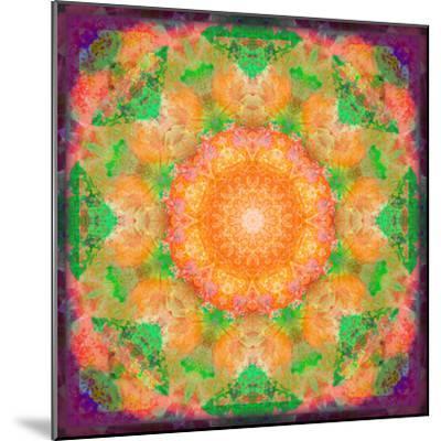 A Many Layered Flower Mandala-Alaya Gadeh-Mounted Photographic Print