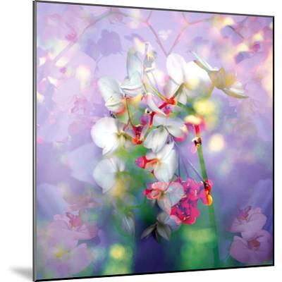 White Orchids in a Vase with Dreamy Texture-Alaya Gadeh-Mounted Photographic Print