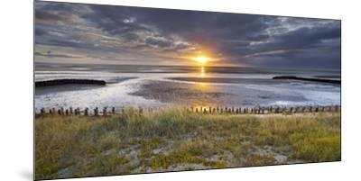 Sunrise in the Mudflat, Close to List (Municipality), Sylt (Island), Schleswig-Holstein, Germany-Rainer Mirau-Mounted Premium Photographic Print