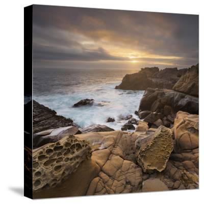 Sandstone, Salt Point State Park, Sonoma Coast, California, Usa-Rainer Mirau-Stretched Canvas Print