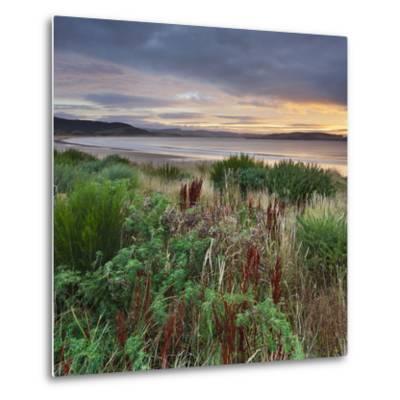 Porpoise Bay, Catlins, Southland, South Island, New Zealand-Rainer Mirau-Metal Print