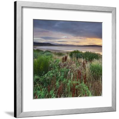 Porpoise Bay, Catlins, Southland, South Island, New Zealand-Rainer Mirau-Framed Photographic Print