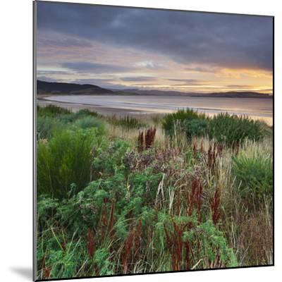 Porpoise Bay, Catlins, Southland, South Island, New Zealand-Rainer Mirau-Mounted Photographic Print