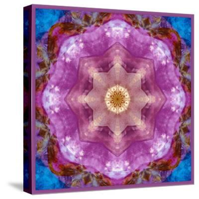 Symmetric Layer Work from Flowers Photographs-Alaya Gadeh-Stretched Canvas Print