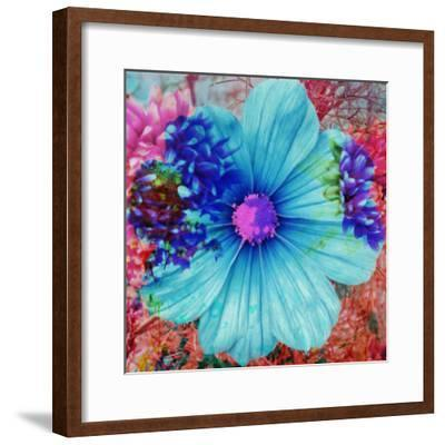 Composing with Blue Flowers-Alaya Gadeh-Framed Photographic Print