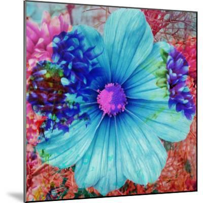 Composing with Blue Flowers-Alaya Gadeh-Mounted Photographic Print