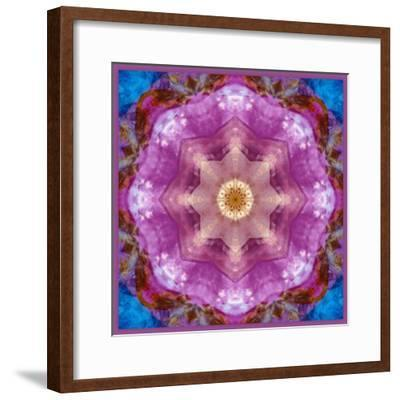 Symmetric Layer Work from Flowers Photographs-Alaya Gadeh-Framed Photographic Print