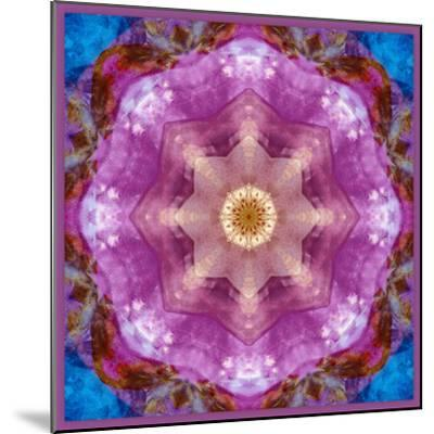 Symmetric Layer Work from Flowers Photographs-Alaya Gadeh-Mounted Photographic Print