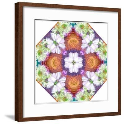 Ornamental Rhomb from Flowers-Alaya Gadeh-Framed Photographic Print