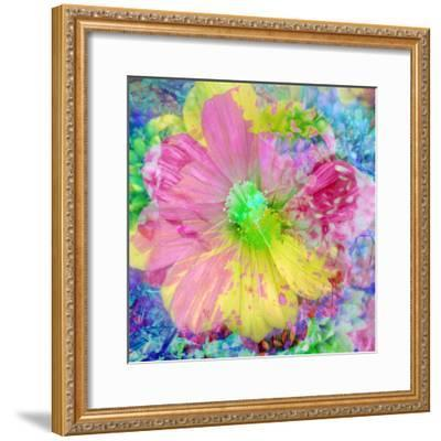 Composing with Coloured Blossoms-Alaya Gadeh-Framed Photographic Print