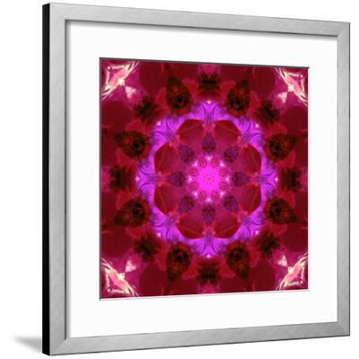 Bright Energetic Mandala Ornament from Flowers-Alaya Gadeh-Framed Photographic Print