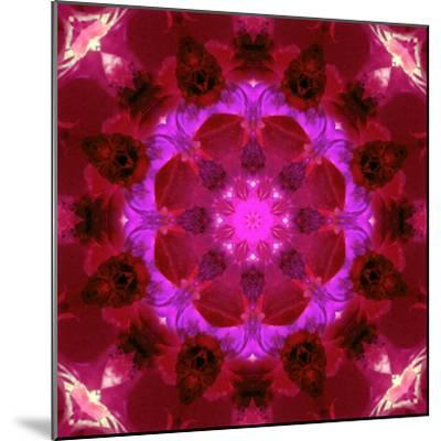 Bright Energetic Mandala Ornament from Flowers-Alaya Gadeh-Mounted Photographic Print