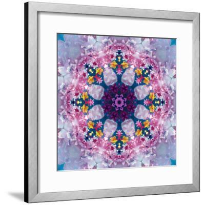Mandala Ornament from Poeny Blossoms-Alaya Gadeh-Framed Photographic Print