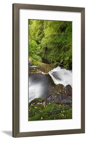 Upper Mclean Falls, Catlins, Southland South Island, New Zealand-Rainer Mirau-Framed Photographic Print